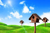 Wooden bird house and green grass with blue sky — Stock Photo