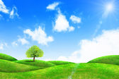 Green grass and tree with bright blue sky  — Stock Photo