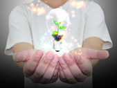Hand holding lightbulb : eco concept hand holding Bulb  — Stock Photo