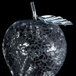 Apple, glass metal and stone. Exclusive designer work. — Zdjęcie stockowe