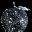 Apple, glass metal and stone. Exclusive designer work. — Lizenzfreies Foto
