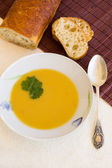 Soup of red lentils with herbs and spices — Stock Photo