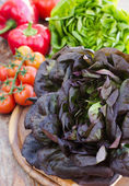 Green and red oak lettuce with tomatoes and paprika close up  — ストック写真