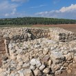 Megiddo ruins, Israel — Stock Photo #35195689