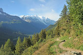 Tour de Mont Blanc path — Foto Stock