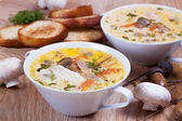 Mushroom soup with croutons — Stock Photo