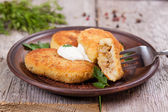 Potato patties with sour cream on the plate, stuffing — Stock Photo