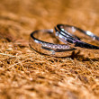 Stock Photo: Couple rings