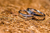Couple rings — Stock Photo