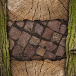 Wood and stone background — Stock Photo