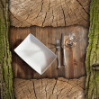 Coupon background for a rustic dinner — Stock Photo