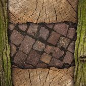 Wood and stone background — Stock Photo