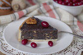 Poppy seed cake with nuts — Stock Photo