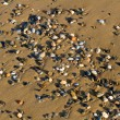 Stock Photo: Various multicolored pebbles on wet sand.