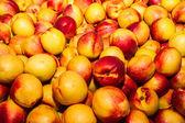 Heerlijke verse sappige nectarines in lokale fruitmarkt — Stockfoto
