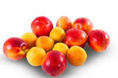 Fresh ripe Nectarines and appricottes — Stock Photo