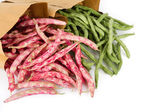 Fresh red and green beans — Stock Photo