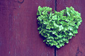 Heart  background of the fence — Stock Photo