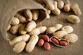 Peeled peanut on well peanuts — Stock fotografie
