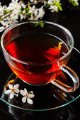 Cup of tea and cherry branch — Stock fotografie
