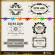 Set of calligraphic and floral design elements — Vector de stock