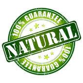 自然保证邮票 — 图库矢量图片