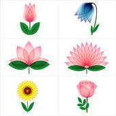 Gül, lale, çan çiçeği, aster, lotus, ayçiçeği — Stok Vektör