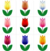 Set of tulips — Stock Vector