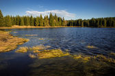 Autumn on the lake — Stockfoto