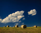 Hay bales on a hill — Foto Stock