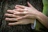 Wedding rings on the hands — Stock Photo