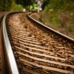 Railroad tracks — Stock Photo #35174573