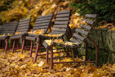 Bench in autumn park — Stock Photo
