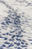следы человека в глубоком снегу — Стоковое фото