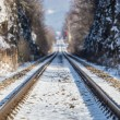 Rail tracks — Stock Photo #39673037