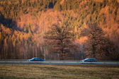 Highway with cars and nature — Stock Photo