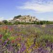 Castle in Provence — Stock Photo