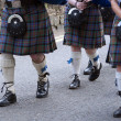 Bagpipers — Stock Photo #35327711