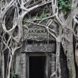 Ta Prohm temple door — Stock Photo