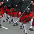 Stock Photo: Kilt parade