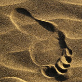 Footprint — Stock Photo