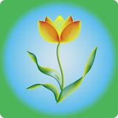 Vector tulip — Stock Vector