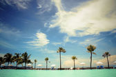 Beach with palm trees and sun loungers on the background of blue sky — Stock Photo