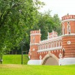 Tsaritsyno - State Museum Reserve Park in Moscow, Russia — Stock Photo #49278249