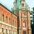 Tsaritsyno - State Museum Reserve Park in Moscow, Russia — Stock Photo #49281489