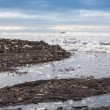 Dirty beach - pollution along the beach — Foto de Stock