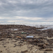 Dirty beach - pollution along the beach — Stok fotoğraf