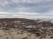 Dirty beach - pollution along the beach — Stock Photo