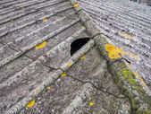 Asbestos roof — Stock Photo