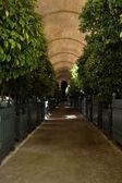 ヴェルサイユ宮殿オランジェリー — ストック写真